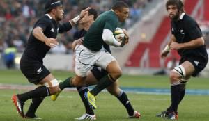 springboks-vs-all-blacks